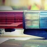 Les policiers rentrent de patrouille : ils n'en reviennent pas de voir qui est installé dans leur voiture !
