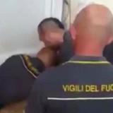 Le pompier sauve un chaton et sa réaction fait pleurer le monde entier (Vidéo)