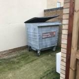 En sortant ses poubelles, elle voit une boite marquée « Fragile » et constate qu'elle bouge !