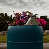 Retour du cimetière : il veut jeter un déchet et découvre l'impensable dans une poubelle