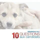 Cause animale : 7 candidats à la présidentielle répondent à 30 Millions d'Amis