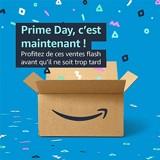 Prime Day 2021 : Des accessoires à petit prix pour votre chien !
