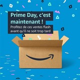 Prime Day 2021 : Jusqu'à 40% de remise sur les accessoires pour votre chat