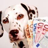 L'animal le plus riche du monde est... un chien !