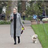 Londres : un cabinet d'avocats recrute un promeneur de chien pour £30 000 par an