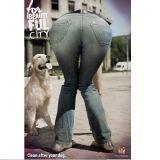 Pour une ville sans crottes de chiens, montrez vos fesses !
