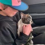 Ce petit garçon a reçu un chiot en cadeau de la part de son père défunt (Vidéo)