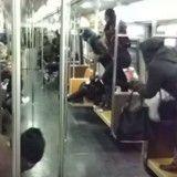 Un rat sème la panique dans le métro newyorkais (Vidéo)