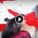 Tellement chou ! Cette maman rat tire son humain par le doigt pour lui montrer son bébé