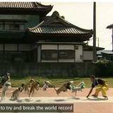 13 chiens font de la corde à sauter (Vidéo du jour)