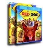 Red Dog : le film évènement débarque en France !