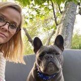 Le Bouledogue français de Reese Witherspoon s'est éteint d'un cancer : elle lui rend un magnifique hommage
