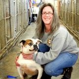Un riche homme d'affaire offre 250 000$ à un refuge pour animaux abandonnés