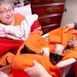 Une résidente d'une maison de retraite rêvait de voir des chatons… son vœu a été exaucé