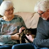 Retraités, ils souhaitent adopter un chat dans un refuge mais on leur refuse à cause de leur âge