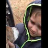 Les émouvantes retrouvailles d'un petit garçon avec son chien disparu (Vidéo du jour)
