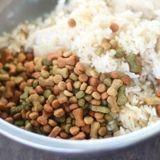 Le riz complet est-il un aliment adapté pour les chiens ?