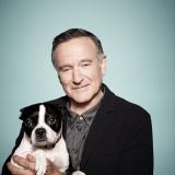 Hommage à Robin Williams, ce grand ami des chiens
