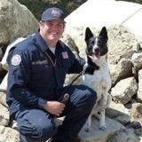 Condamné à l'euthanasie en 2012, ce chien hyperactif sauve désormais des vies