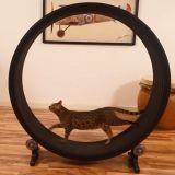 La roue pour chat investira-t-elle bientôt tous les salons ?