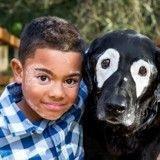 Ce chien atteint de vitiligo a aidé un petit garçon comme lui !