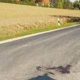 Elle voit une tâche au milieu de la route et freine : devant elle, une scène d'une tristesse infinie