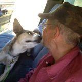 Le loup solitaire, son chien, et leur très belle histoire