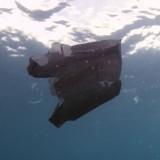 A la plage, il trouve un sac noir flottant dans l'eau : il le sort et est choqué de ce qui se trouve dedans !