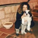 Elle adopte un chiot Saint-Bernard : 3 ans après, rien n'est plus comme avant...