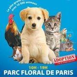Salon Animal Expo & Animalis 2019 : le bien-être animal à l'honneur le 5 et 6 octobre !