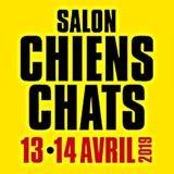 Salon Chiens Chats 2019 : 100 exposants, 500 chats et 500 chiens qui n'attendent que vous !