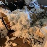 Son salon est saccagé et elle croit à un cambriolage, mais son chien lui révèle un indice bouleversant