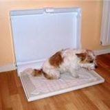 Sanidome : les toilettes pour chien