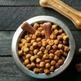 Alimentation pour chien et chat :  quelles différences entre le sans gluten et le sans céréale ?