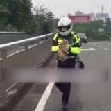 Le policier à moto s'arrête au milieu de la route : il court vers une ombre figée au loin et tout le monde filme !
