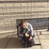 Un non-voyant demande aux internautes de décrire leurs chiens : les réponses sont bouleversantes !
