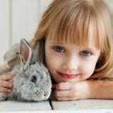 Cancers pédiatriques : des séances de zoothérapie pour aider les enfants