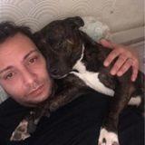 Il part à un entretien d'embauche, à son retour, son chien a été adopté par une autre famille !