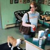 En entrant dans ce salon de toilettage, ce bulldog ne se doutait pas qu'il n'en repartirait jamais