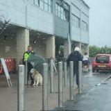 Un employé de sécurité voit un chien attaché sous la pluie : sa réaction laisse tout le monde sans voix