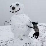 Le chien s'approche du bonhomme de neige et refuse de partir sans son bras ! (Vidéo)