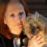 Les chroniques de Maître Terrin : En 2018, la loi sera-t-elle enfin appliquée pour les animaux ?