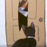 Des chatons rejouent des scènes cultes de films d'horreur, et… c'est terrifiant ! (Vidéo)