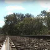 Chiot sur la voie ferrée : une femme fonce pour l'aider et ce qu'elle découvre lui glace le sang