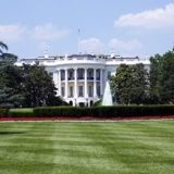 Joe Biden : c'est décidé, il y aura un chat à la Maison-Blanche !