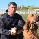 Le chien de la brigade se met à courir vers une rivière : 45 minutes plus tard, tout le monde retient son souffle