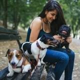 5 raisons pour lesquelles s'occuper d'un chien est l'une des meilleures résolutions pour 2018