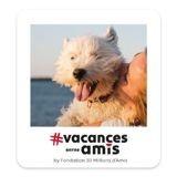 Vacances entre amis : la plateforme dédiée aux vacances avec nos animaux de compagnie