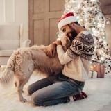 Faire garder son chien à Noël : la présence humaine, le meilleur des cadeaux