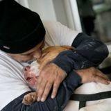 Il dépose son chien au refuge : quelques semaines plus tard, les volontaires réalisent qu'ils n'avaient rien compris